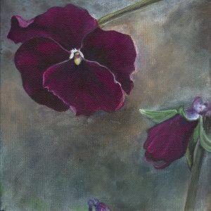 purple pansy 2